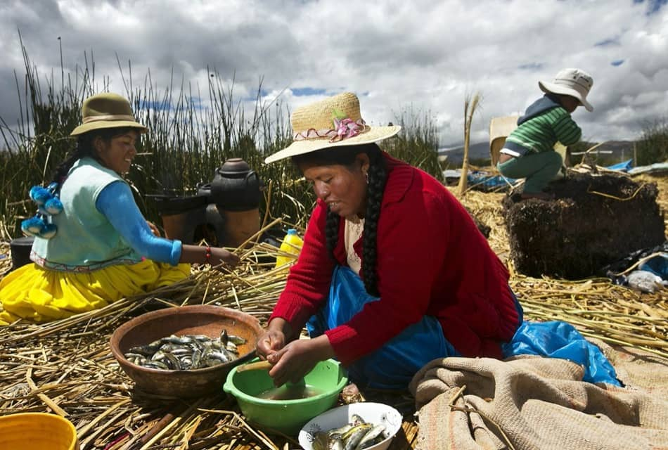 Trout Fishing in Lake Titicaca