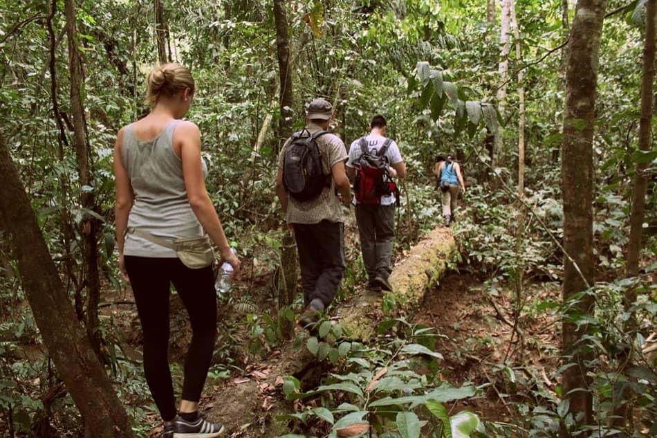 Santa Cruz Bolivia Jungle Tours